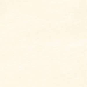 Teracota Effecta Beige 42*42 1sort
